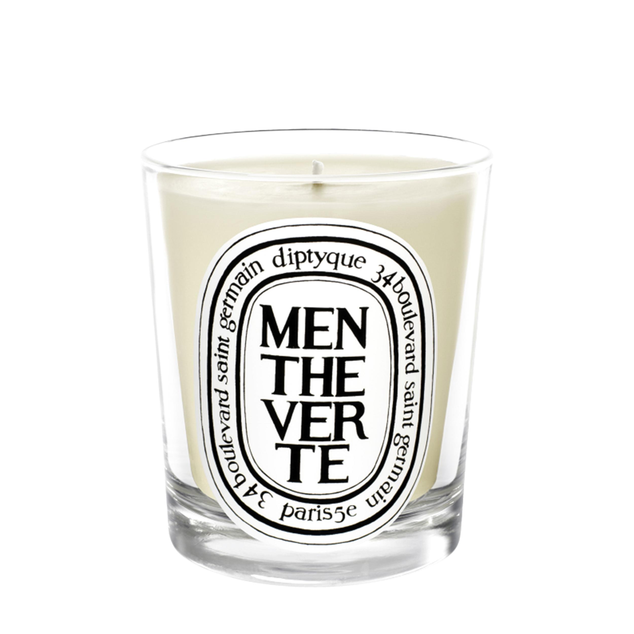Купить Diptyque Свеча Menthe verte
